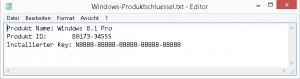 Installierter Windows 8.1 Key