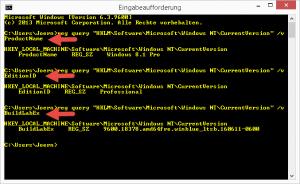 Windows Produktname Edition Build auslesen