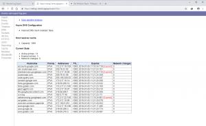 Chrome Browser DNS Cache