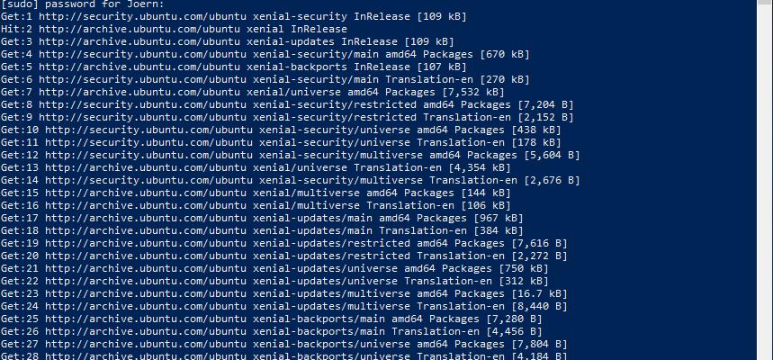 Linux Subsystem unter Windows Server 2019