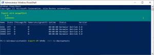 VM-Export Hyper-V Host