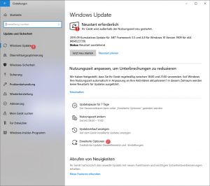 Windows 10 1909 verzögern
