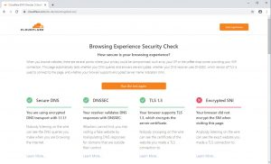 Cloudflare Security Browser Check