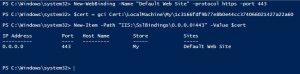 Set IIS SSL SiteBinding