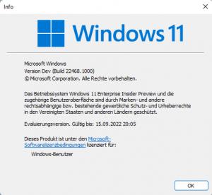 Vorbereitungen auf Windows 11